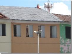 telhado dos casarões 010